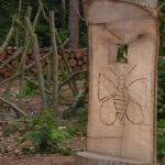 Lijn 530 Aarschot, halte Betekomsesteenweg, natuur en bos,Ingerichte speelzone